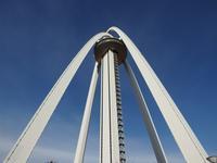 『138タワーパークとフラワーパーク江南を歩いて・・・・・』 - 自然風の自然風だより