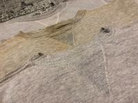 1月16日(水)マグネッツ大阪店ヴィンテージ入荷!!#4 アスレチック編!FrontV&Champion!! - magnets vintage clothing コダワリがある大人の為に。