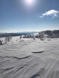 キラキラの雪景色☆ - 笑う門には福来たる
