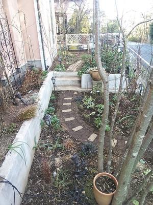 たまには書こう自分の庭・・・・・誘引・剪定終わりました。 - あけの秘密の花園