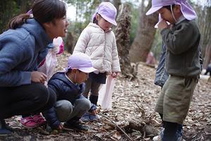 冬の森。ー終ー - 陽だまりの小窓 - 菊の花幼稚園保育のようす