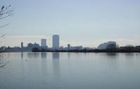 静かな江戸川 - TOM'S Photo