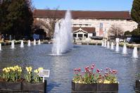上野公園と上野東照宮 - さんじゃらっと☆blog2