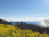 空と海と菜の花と - Kokiary@ のどかへつなぐ happy days