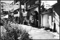 中野-19 - Camellia-shige Gallery 2