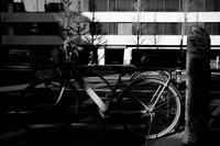 自転車のある生活 - 節操のない写真館