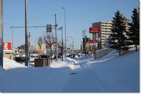 雪の散歩道('19・1・13~14) - 花日記