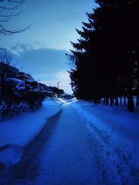 1月15日今日の写真 - ainosatoブログ02