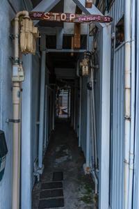 正月の新宿、花園神社界隈 - デジカメ写真集