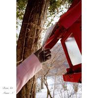 赤城神社にて - BEAN ART Cafe  - Mami . N -