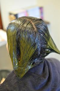 「髪が細くなってきたな〜っと不安な方へ」 - 観音寺市 美容室 accha