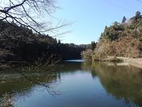冬の探し物 - 千葉県いすみ環境と文化のさとセンター
