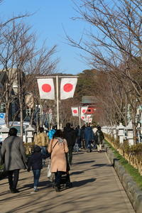 鶴岡八幡宮と神苑ぼたん庭園(1) - 木洩れ日 青葉 photo散歩
