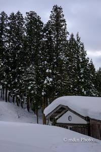 雪国へ3 - 季節のおくりもの