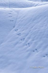 雪国へ4 - 季節のおくりもの