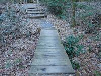 『ながら川ふれあいの森を歩いて・・・・・』 - 自然風の自然風だより