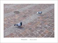 アントワープの街 スナップ#12 - Minnenfoto
