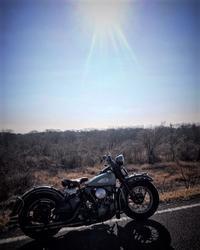 眩しいぜ - Cyla motorcycle DEPT.