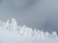 今年の樹氷は大きいらしいですよ1/17 - つくしんぼ日記 ~徒然編~