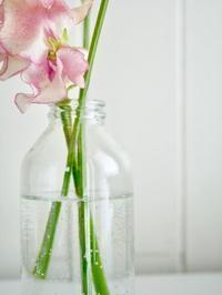 お花を飾って - RoseBijou-parler゚・*:.。.