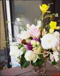 お花は、ぽかぽか方向へ - HAPPYさんのにんまり日記