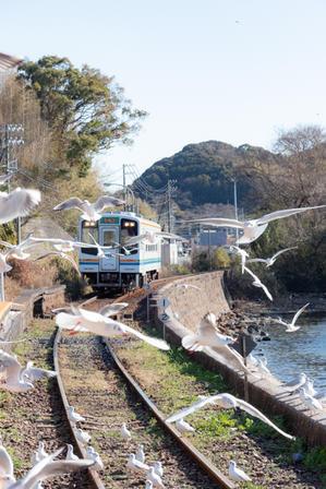 カモメ*鉄道 6 - 気ままにお散歩
