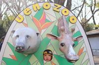 一年ぶりの上野動物園 - London tea