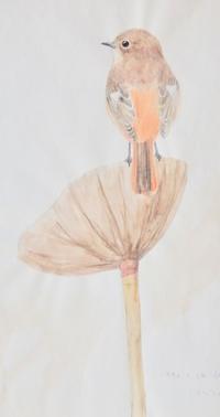 #野鳥スケッチ #ネイチャー・ジャーナル 『ジョウビタキ』 - スケッチ感察ノート (Nature journal)