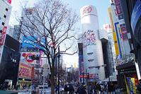 1月17日㈭の109前交差点 - でじたる渋谷NEWS