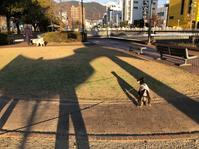 レイ散歩 - クルマとカメラで遊ぶ日々は…