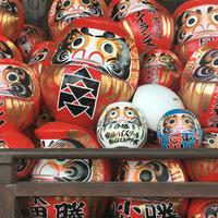 だるまの聖地 - 赤坂・ニューオータニのヘアサロン大野ザメイン店ブログ