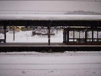 1月17日今日の写真 - ainosatoブログ02