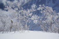 今季の雪山 - 人生山あり