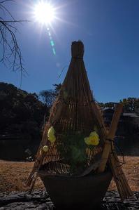 冬牡丹 - 休日PHOTOブログ