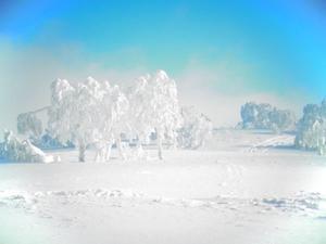 北海道SKI[2] -