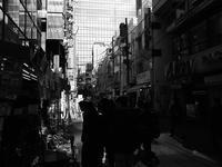 デンキの街 - 節操のない写真館