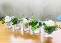 春を待つホワイト&グリーンの花♪ - Bleu Belle Fleur☆ブルーベルフルール