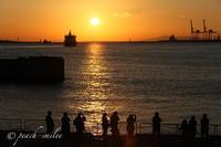 海遊館part4 - 感じるまま、気ままなblog