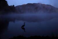 大分県由布院金鱗湖へ撮影に、、、2019 1月 - 優柔不断なAB型男の独り言 THE dream room.