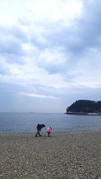 冬の海 - pig meets monkey