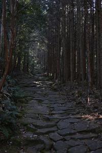 熊野古道馬越峠 - HAPPY to ...