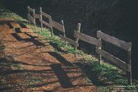 """wooden fence"" - ~まきち写真工房~"