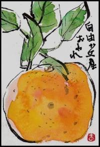 柚子 - ひだまり●●●陽のあたる場所みつけました