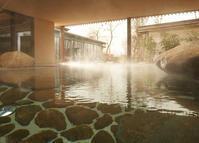 ちょっぴり日本の雰囲気が味わえるサウナセンター - ドイツの陽だまり