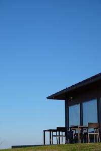 青空を仰ぎながら・・・ - aya's photo