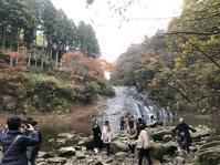養老渓谷の紅葉 - 犬の一歩