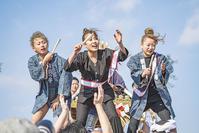 江ノ島 寒中神輿錬成大会2019見てきました - エーデルワイスPhoto