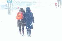 体感温度 - 長女Yのつれづれ記
