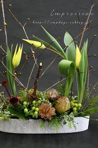 先週の定期装花からチューリップ:ヨコハマ - Impression Days