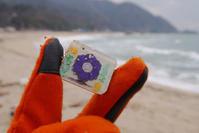 花牌 - Beachcomber's Logbook